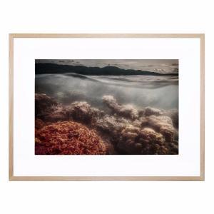 Underwater Evening - Framed Print