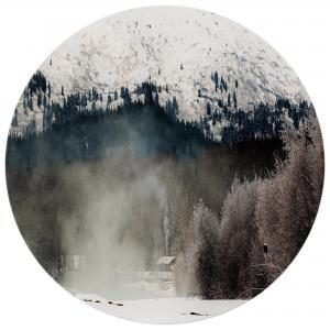 Lone Winter - Acrylic Art