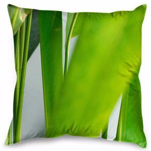 Reed and Green - Cushion