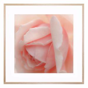 Caprioska Bloom - Framed Print