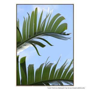 Tropical Close Up - Canvas Print
