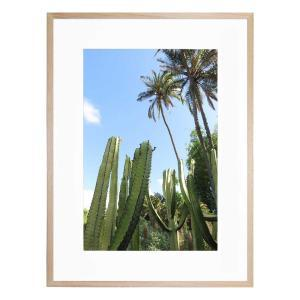 Green Wonder - Framed Print