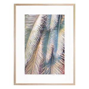 Sunset Palm - Framed Print