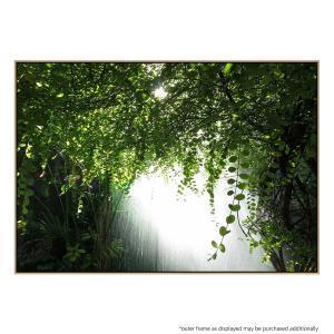 Canopy Verdis - Canvas Print