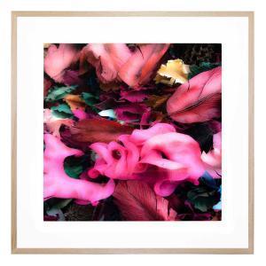 Brilliant Days - Framed Print