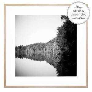 Trees and Lake - Framed Print