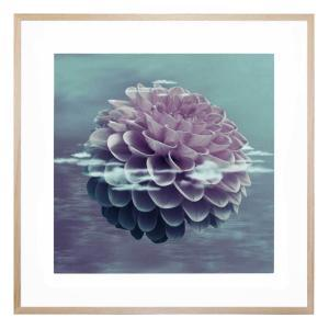Apart from the World - Framed Print