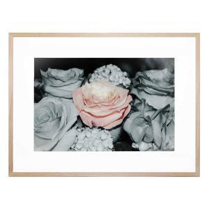 Amore Rosato - Framed Print