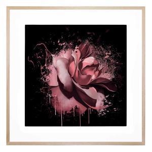 Felicita - Framed Print