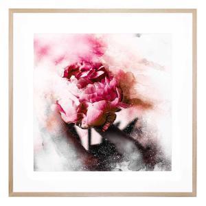 Pivoine - Framed Print