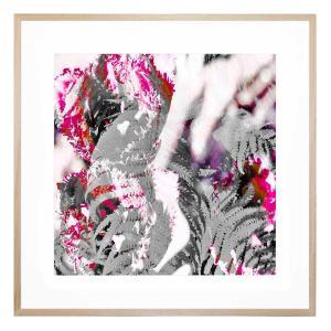 Ferny Bloom - Framed Print