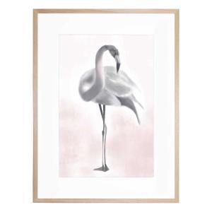 Fleur The Flamingo - Framed Print