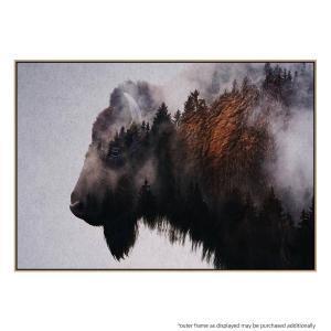 Bison - Canvas Print