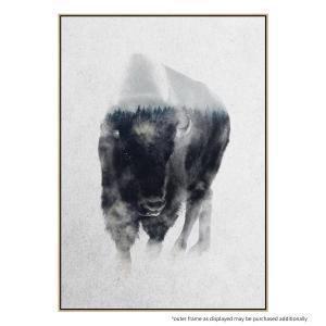 Bison In the Mist - Canvas Print