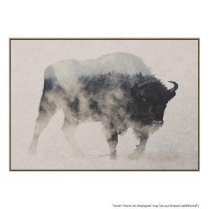 Bison In the Fog - Canvas Print