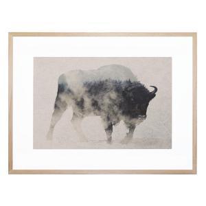 Bison In the Fog - Framed Print