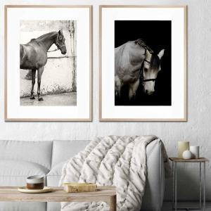 A Stable Life / Resting Places - Framed Print