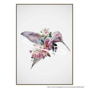 Kolibri - Canvas Print