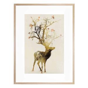 Autumn - Framed Print