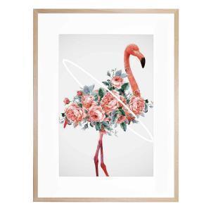 Flamingo - Framed Print