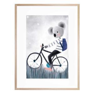 Harvey The Koala - Framed Print