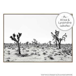 Palm Springs Story - Canvas Print
