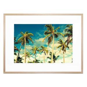 Bright Palms - Framed Print
