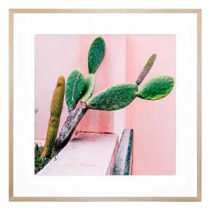Urban Jungle - Framed Print