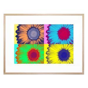 Pop Art Daisy - Framed Print
