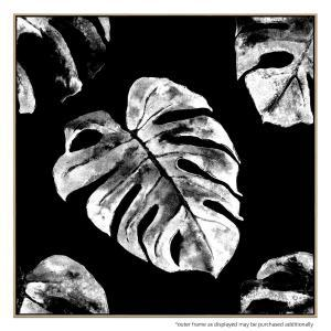 Monstera Mia - Canvas Print