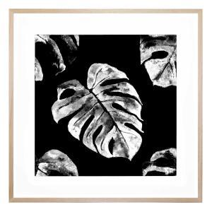 Monstera Mia - Framed Print