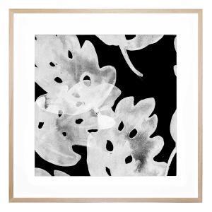Stevia - Framed Print