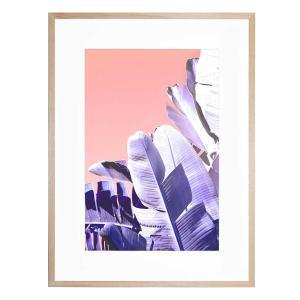 Botanica Blush - Framed Print
