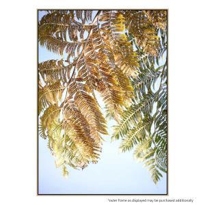 Fern Frond - Canvas Print