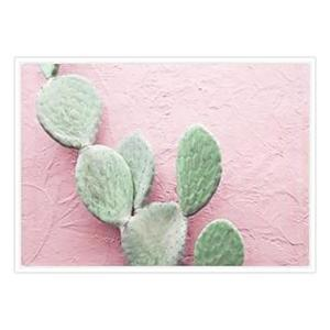 Blush Cactus - White Frame - ONE ONLY