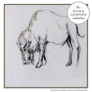 Bison in Grey - Canvas Print