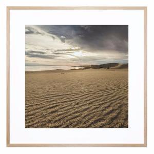 Desert Oasis - Framed Print