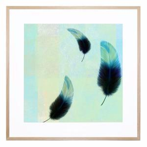 Feather Falls - Framed Print