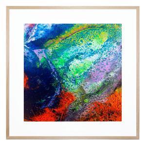 Coral Bloom - Framed Print