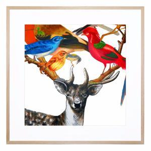 Deer and Birds - Framed Print