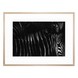 Untitled 5 - Framed Print