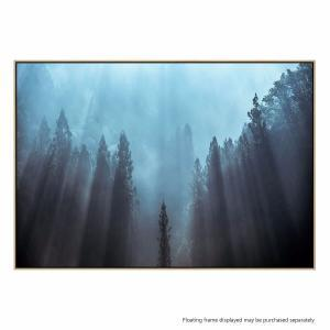 Light to be Believed - Canvas Print