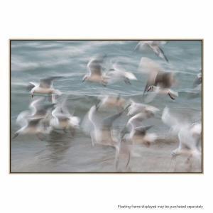 Birds - Canvas Print