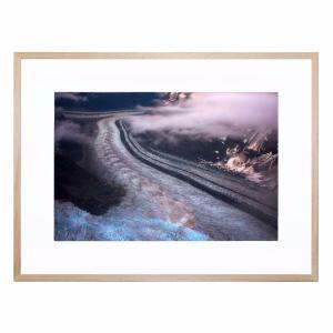 Chopra - Framed Print