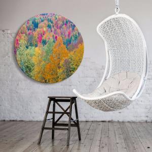 Japonicas Wish - Acrylic Art