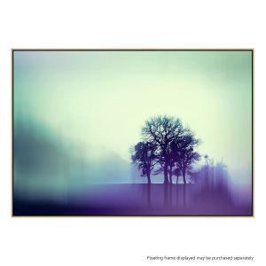 Untitled 9 - Canvas Print