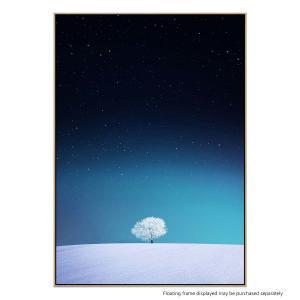 Apple - Canvas Print
