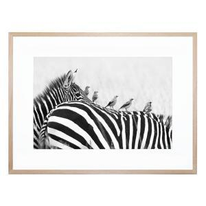 In Order - Framed Print