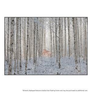 Ends In White - Canvas Print