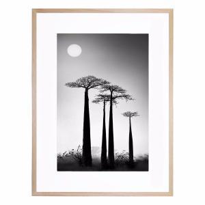High Strains - Framed Print